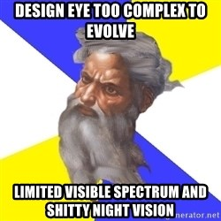 Advice God - design eye too complex to evolve Limited visible spectrum and shitty night vision