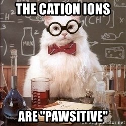 "Chemistry Cat - The CATion ions  aRE ""PAWSITIVE"""