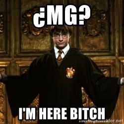 Harry Potter Come At Me Bro - ¿mg? I'm here bitch