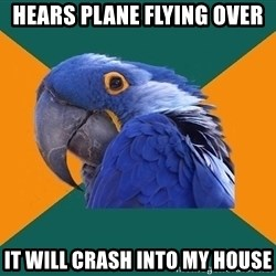 Paranoid Parrot - hears PLANE FLYING over it WILL CRASH into MY HOUSE