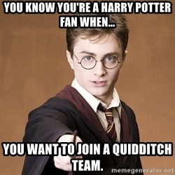Harry Pothead - you know you're a harry potter fan when... You want to join a Quidditch team.