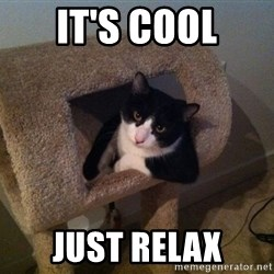 cool cat - It's cool JUST RELAX