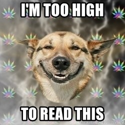 Stoner Dog - I'm too high to read this