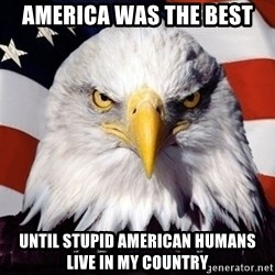American Pride Eagle - america was the best until stupid american humans live in my country