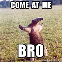 Anteater - COME  AT  ME BRO