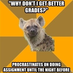 "Hypocrite Hyena - ""why don't i get better grades?"" procrastinates on doing assignment until the night before"