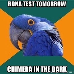 Paranoid Parrot - RDNA test tomorrow chimera in the dark