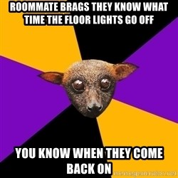 Engineering Student Bat - Roommate brags they know what time the floor lights go off you know when they come back on