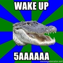 Noob Hisoutensoku Alligator - wake up 5aaaaaa