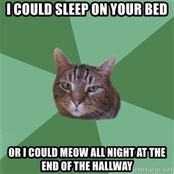 fyeahassholecat - i could sleep on your bed Or i could meow all night at the end of the hallway