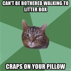 fyeahassholecat - Can't be bothered walking to litter box Craps on your pillow
