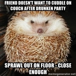 Basement Hedgehog - Friend doesn't want to cuddle on couch after drunken party Sprawl out on floor - close enough