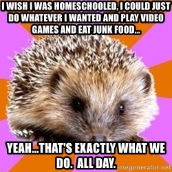 Homeschooled Hedgehog - i wish i was homeschooled, i could just do whatever i wanted and play video games and eat junk food... yeah...that's exactly what we do.  all day.