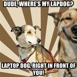 Stoner dogs concerned friend - Dude, Where's my laPdog? Laptop Dog, Right in front of you!