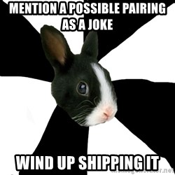 Roleplaying Rabbit - Mention a possible pairing as a joke Wind up shipping it