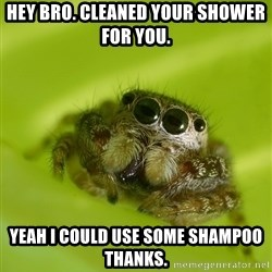 Spiderbro - HEY Bro. Cleaned your shower for you. Yeah i could use some shampoo thanks.