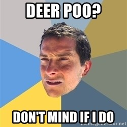 Bear Grylls - deer poo? don't mind if i do