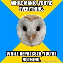 Bipolar Owl - While manic, you're everything. While depressed, you're nothing.