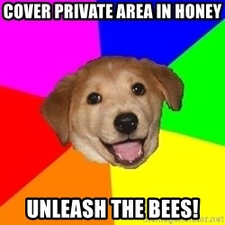 Advice Dog - cOVER pRIVATE aREA IN hONEY UNLEASH THE BEES!