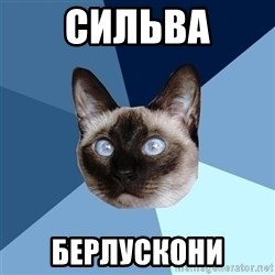 Chronic Illness Cat - Сильва берлускони