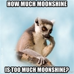 Lamenting Lemur - How much moonshine is too much moonshine?