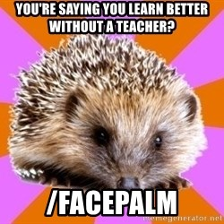 Homeschooled Hedgehog - You're saying you learn better without a teacher? /facepalm