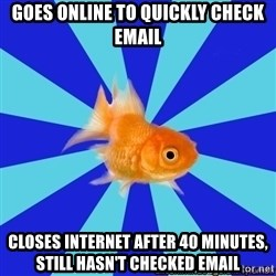 Absentminded Goldfish - goes online to quickly check email closes internet after 40 minutes, still hasn't checked email