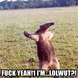Anteater - Fuck Yeah!1 I'm...LOLWUT?!