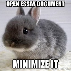 ADHD Bunny - open essay document minimize it