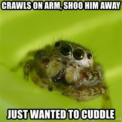 The Spider Bro - Crawls on arm, shoo him away just wanted to cuddle