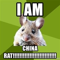 Prospective Museum Professional Mouse - i am China rat!!!!!!!!!!!!!!!!!!!!!!!!!!