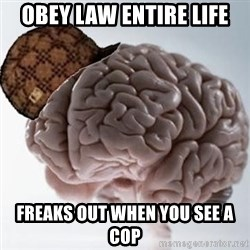 Scumbag Brain - Obey Law Entire life freaks out when you see a cop