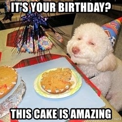 Stoned Birthday Dog - it's your birthday? this cake is amazing