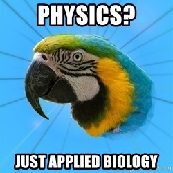 Biology Major Parrot - physics? just applied biology