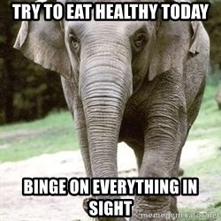 Eating Disordered Elephant  - Try To eat healthy today binge on everything in sight