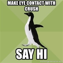 Socially Average Penguin - make eye contact with crush say hi