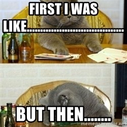 Poker Cat - first i was like.................................... but then........
