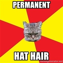 Fast Food Feline - PERMANENT HAT HAIR