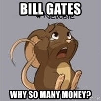 Newbie Mouse - bill gates why so many money?