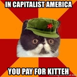 Communist Cat - In capitalist america you pay for kitteh