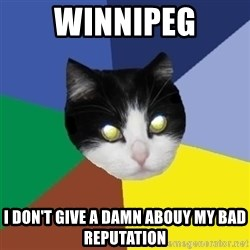 Winnipeg Cat - winnipeg i don't give a damn abouy my bad reputation