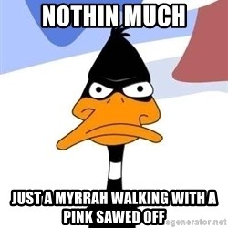 Puzzled Daffy - Nothin Much Just a myrrah walking with a pink sawed off