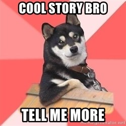 Cool Dog - cool story bro tell me more