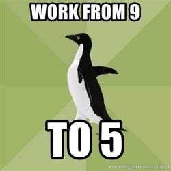 Socially Average Penguin - work from 9 to 5