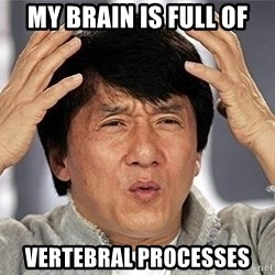 Confused Jackie Chan - My brain is full of vertebral processes