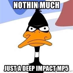 Puzzled Daffy - nothin much just a deep impact mp5
