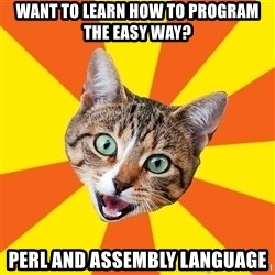 Bad Advice Cat - want to learn how to program the easy way? perl and Assembly language