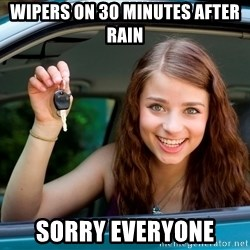 Teen Driver - Wipers on 30 minutes after rain sorry everyone
