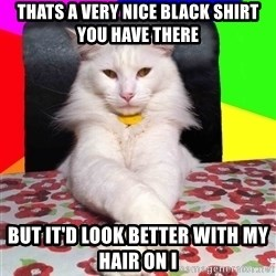 Evil Cat Bonbon - Thats a very nice black shirt you have there but it'd look better with my hair on i