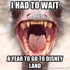Angry White Ostrich - i had to wait a year to go to disney land